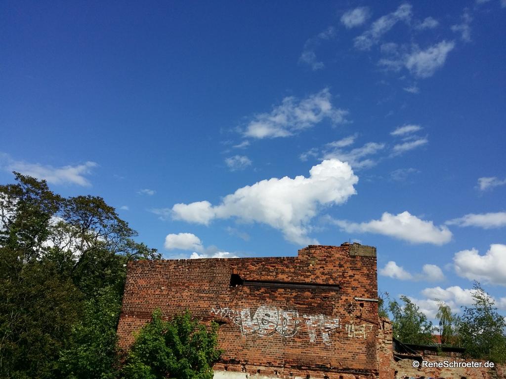 Hahn in den Wolken - Umrisse